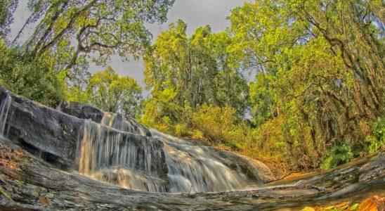 Parc Malawi